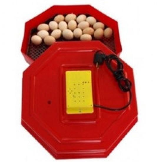 Incubator pentru Oua Automat (Clocitoare) CLEO 5